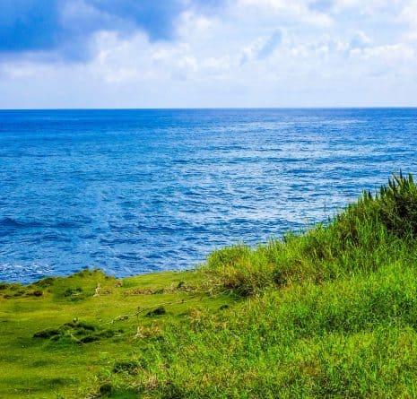 Dynamiques de développement des régions et des territoires de la façade Atlantique