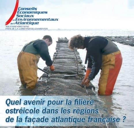 «Quel avenir pour la filière ostréicole dans les régions de la façade atlantique ?»
