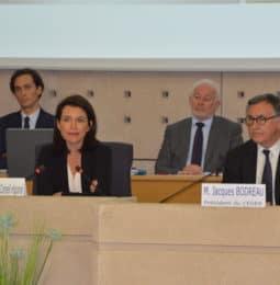 Presentation du Plan de relkance Région aux consillers du CESER-7 juillet 2020